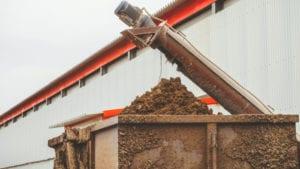 Gallinaza para cría de larvas que nutrirían ponedoras