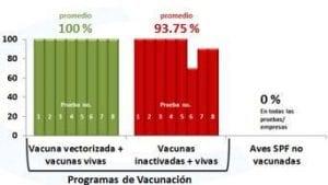 Control y prevención de la enfermedad de Newcastle en países latinoamericanos