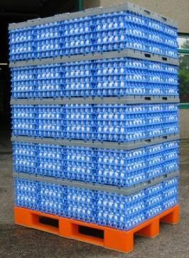 Giordano Poultry Plast transporte de huevos