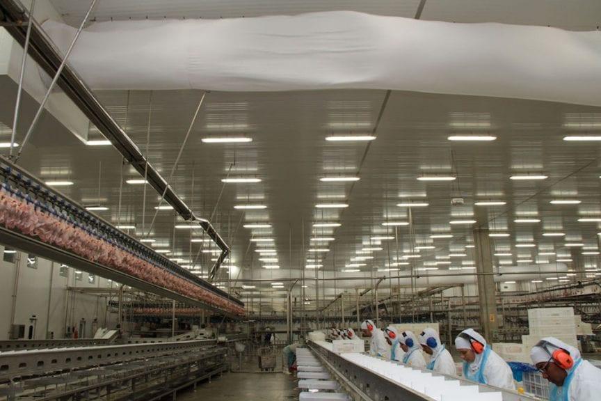 Brasil casi compensa las pérdidas en exportaciones de pollo