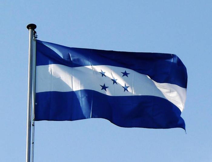 Honduras bajaría su producción en 25,000 ton de pollo