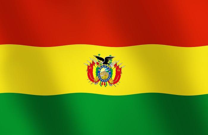 Bolivia produciría 545,000 toneladas de pollo en 2018
