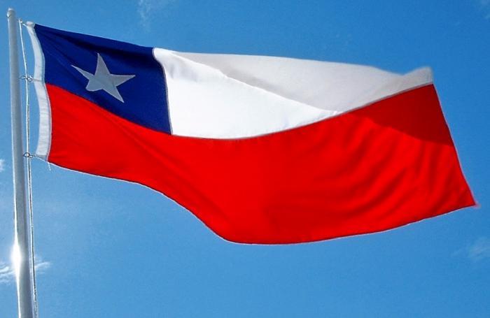 Aumentan exportaciones de pollo y pavo chilenos