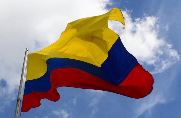 Avicultura colombiana creció 4.4 por ciento en 2016