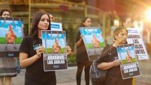 Walmart se cambiará a los huevos sin jaula en Brasil