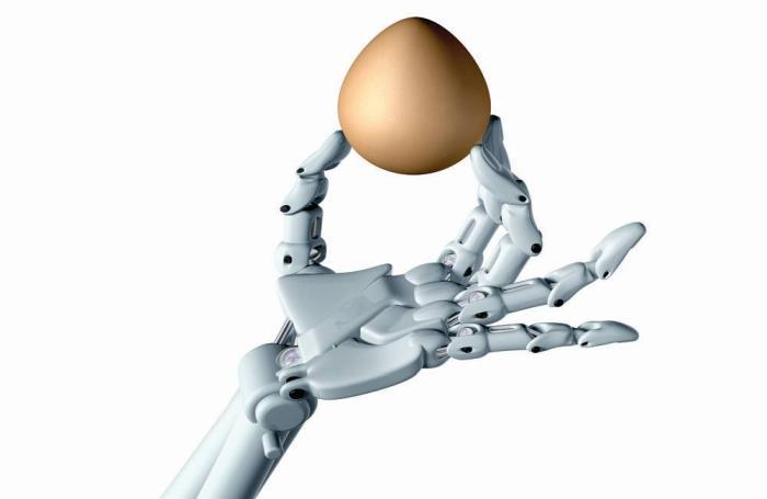 8 avances tecnológicos avícolas que nos deja el 2020