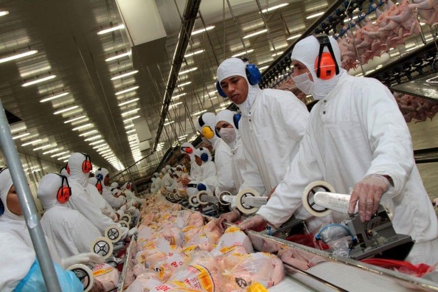 Baja producción avícola y porcina de Brasil en 2018