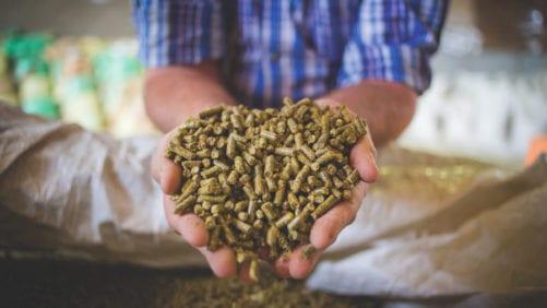 Nueva planta de alimento balanceado en República Dominicana