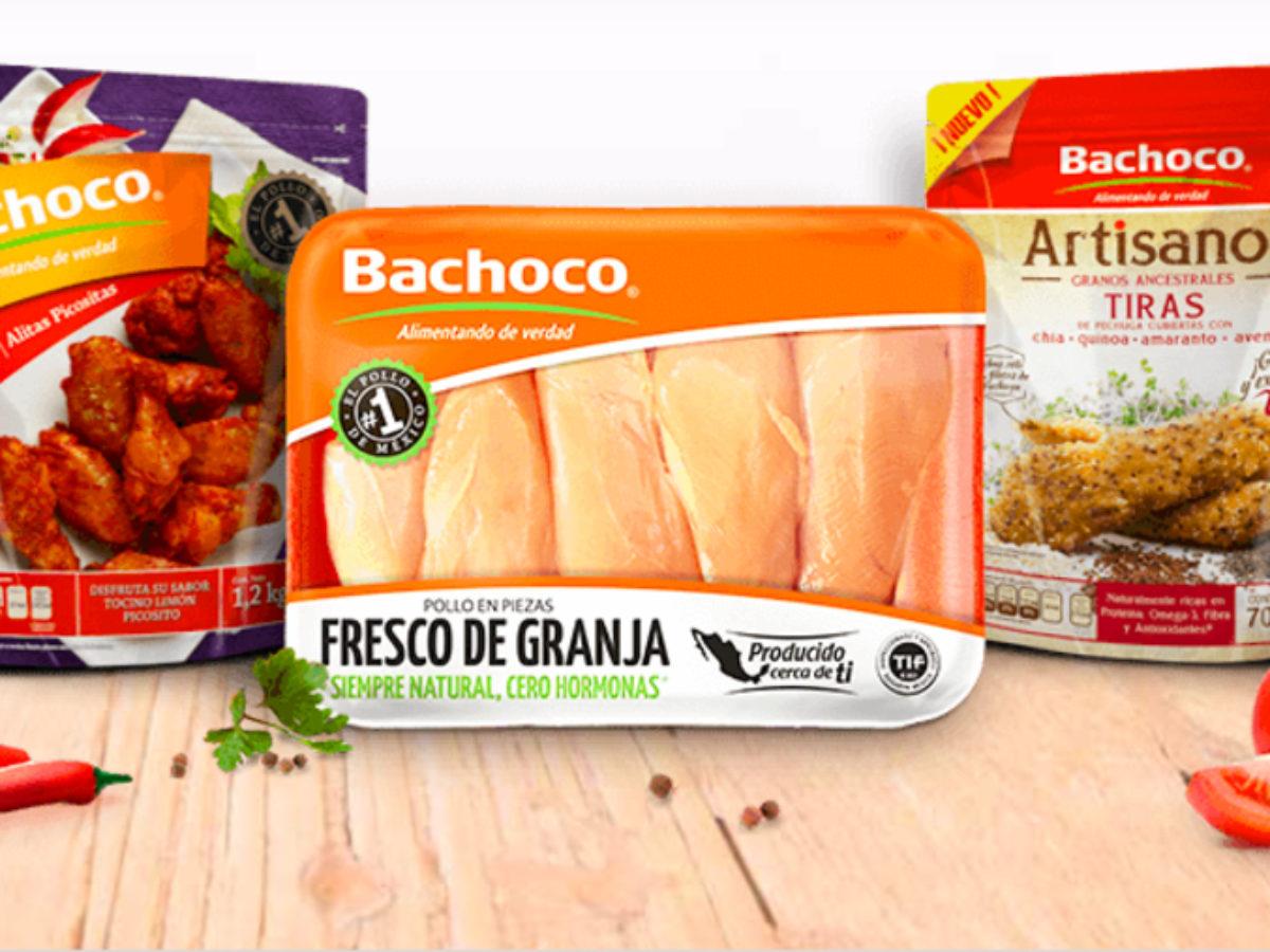 Bachoco acuerda invertir en RYC Alimentos en México   Industria Avícola