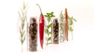 El estrés calórico sale caro: cómo mitigarlo con fitogénicos