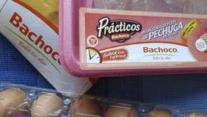 Bachoco: con finanzas sólidas y más ventas de pollo