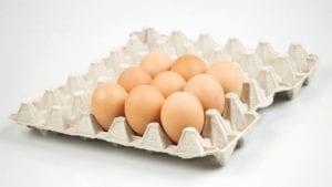 Brasil: segundo mayor productor de huevos de Latinoamérica