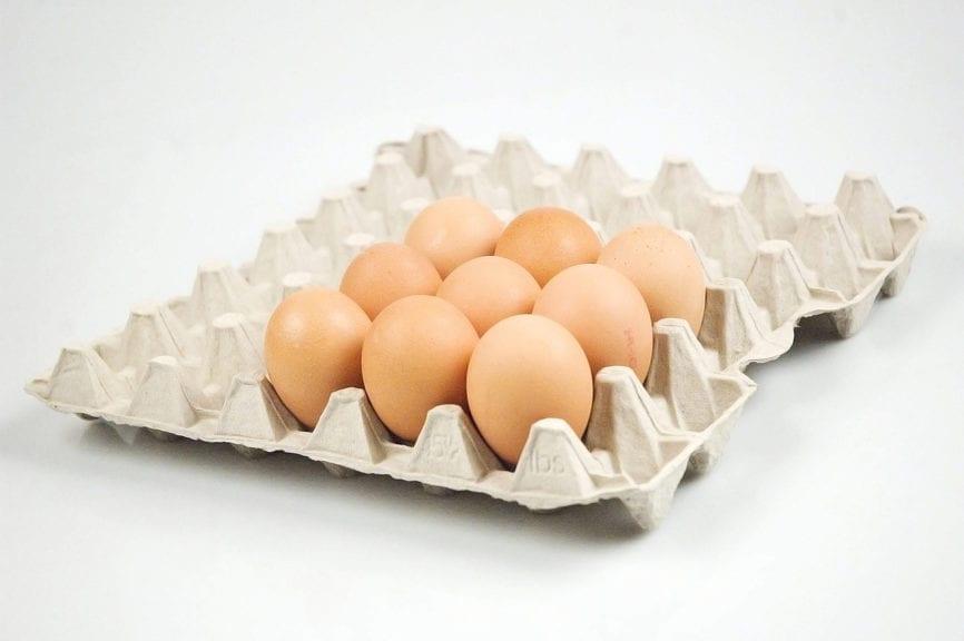 Patentan sistema de construcción con cartones de huevos