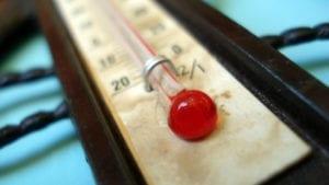 15 consejos para paliar el calor de las aves en galpones