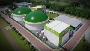 Grupo Campestre generará energía eléctrica con biogás