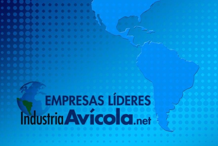 Estas son las 10 mayores empresas de huevo en Latinoamérica