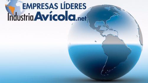 ¿Qué países de Latinoamérica dominan la producción avícola?