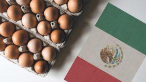 El 'top 5' de empresas productoras de huevo en México