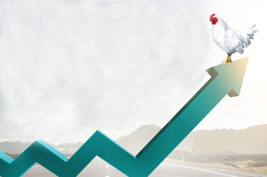 Empresas líderes de pollo y huevo del mundo en 2020