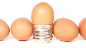 Soluciones lumínicas para las necesidades de la avicultura