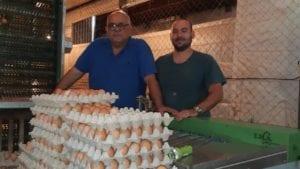 Pymes paraguayas de huevo crean nuevo gremio: la APPPH