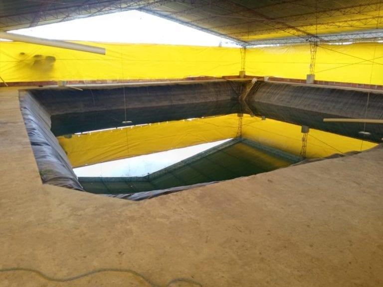 Don Pollo aprovecha agua de lluvia y utiliza energía verde
