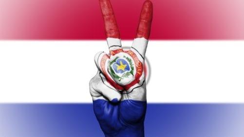 Paraguay: ¿cuánto le falta para exportar pollo en grande?